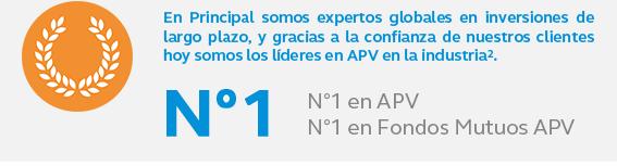 n1_apv.png